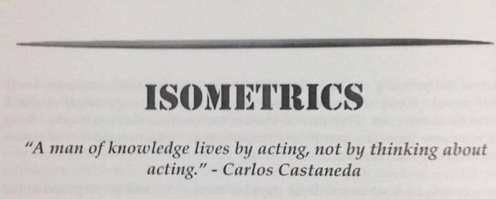 Never Gymless - Isometrics