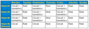 Circuit and isometrics training plan