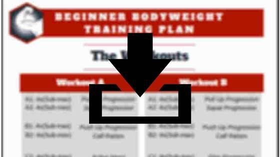 Beginner Bodyweight Training Plan pdf