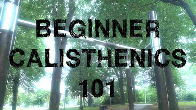 Beginner Calisthenics 101