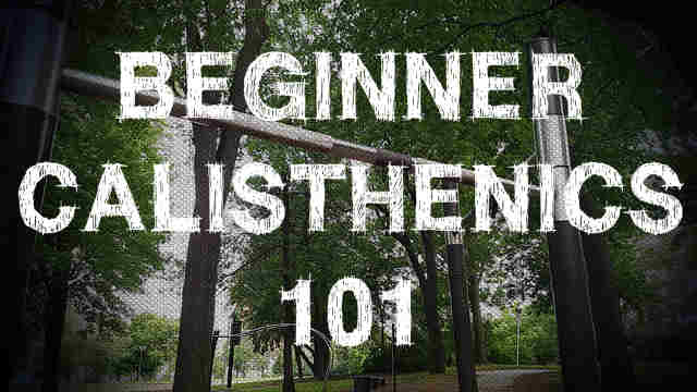 Beginner Calisthenics